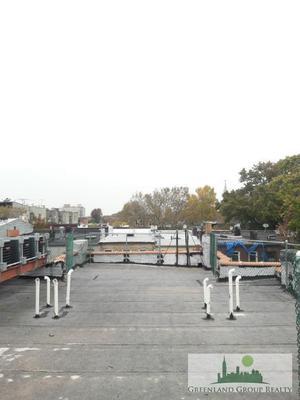 Reade Avenue Staten Island