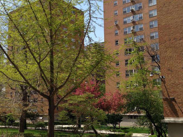 105 ashland pl in fort greene sales rentals for The ashland brooklyn